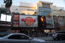 Hard Rock Cafe Picture