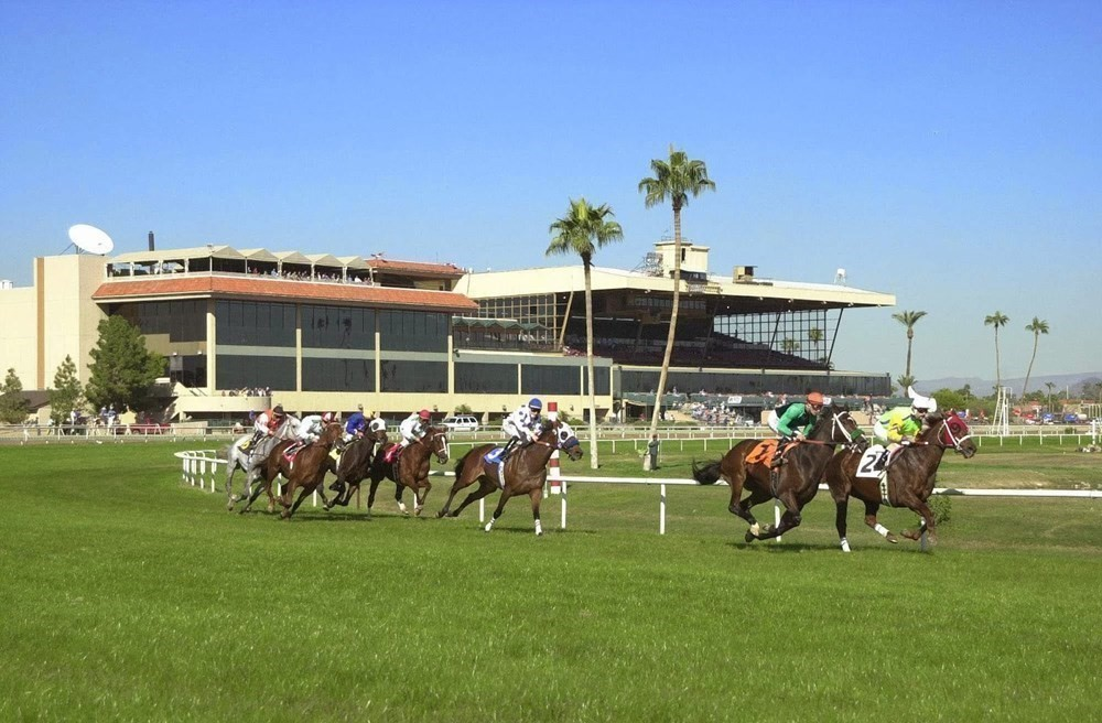 Turf Paradise Racecourse
