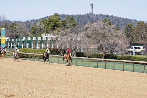 Oaklawn Park image