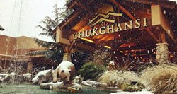 Chukchansi Gold Resort & Casino Rest