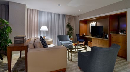 Luxury King Sky Suite image