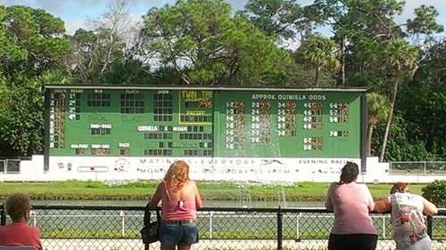 Sarasota Kennel Club image