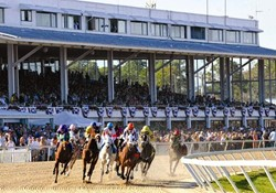 Tampa Bay Downs Rest
