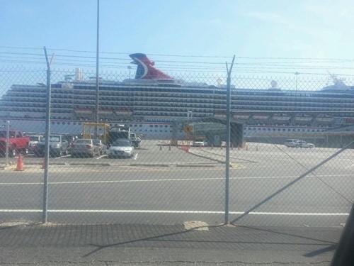 Carnival Cruise Line - Pride image