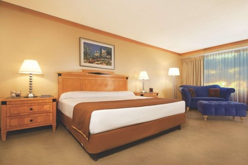 Indigo Junior Suite image