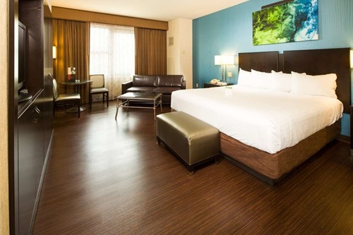 Petstay Luxury Room At Harrah's Cherokee Casino and Hotel