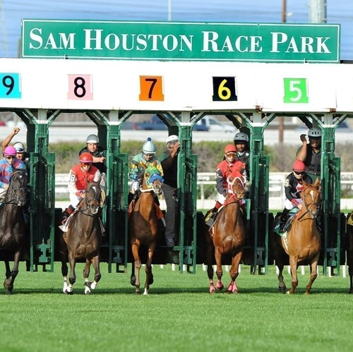 Sam Houston Race Park image