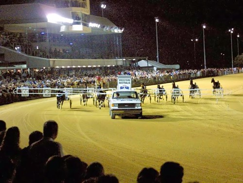 Cessnock Harness Racing Club image