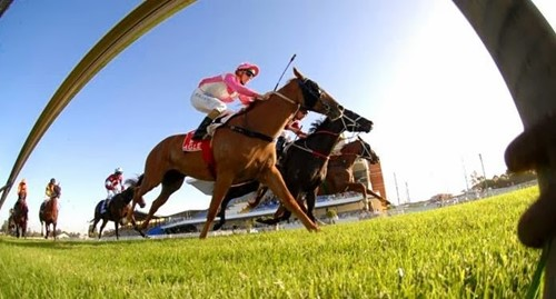 Wyong Race Club image