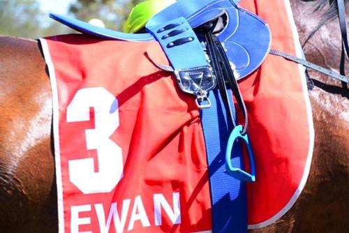 Far North Queensland Amateur Turf Club image