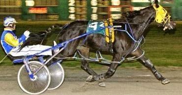 Port Augusta Harness Racecourse Casinos