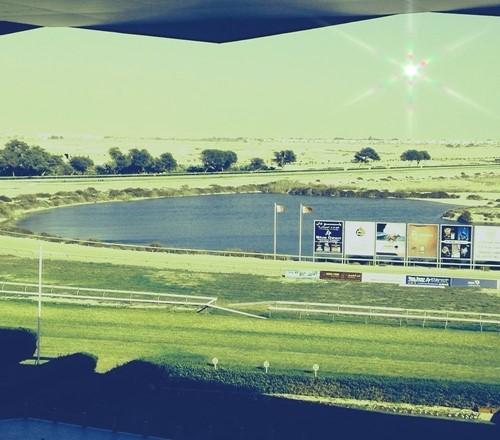 Rashid Equestrian & Horseracing Club image