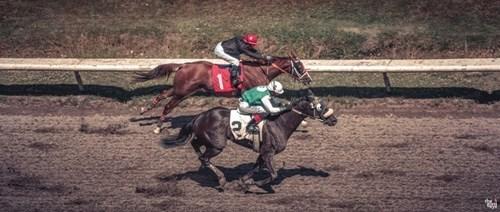Hastings Racecourse image