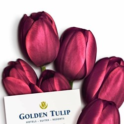 Golden Tulip Nicosia Hotel and Casino Rest