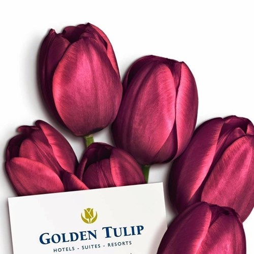 Golden Tulip Nicosia Hotel and Casino image