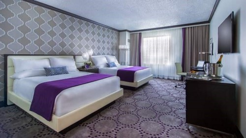 Standard Petstay Room At Harrah's Gulf Coast