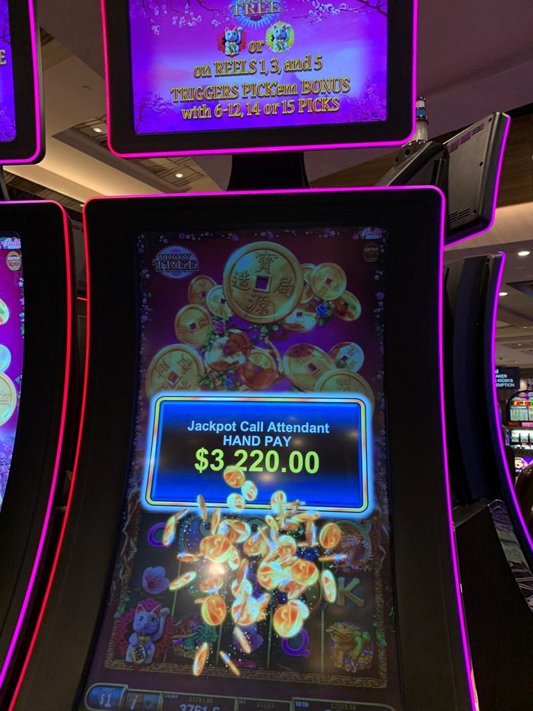 Loyal casino free spins