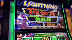 Best Bet - Lightning Link slot machine