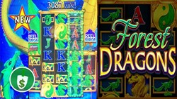 Forest Dragons slot machine