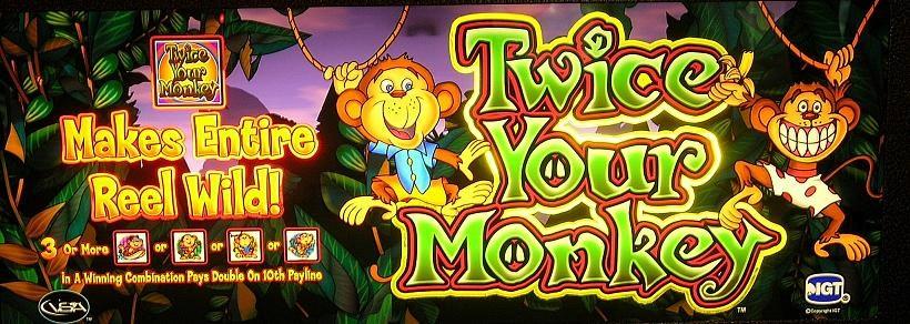 Twice Your Monkey Slot Machine