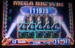 Queen Of The Wild slot machine